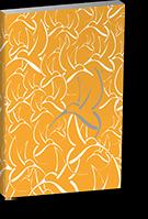 gelber slidebloc 4.1 katalog mit grauem scoop kolibri logo zum download